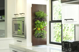 Edible wall on the menu - Synergy Cabinets